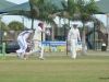 Academy-Cricket-250